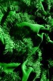 Modèles Vert Dégagez, mais souple, parce qu'il a un Wei plus léger Photo libre de droits