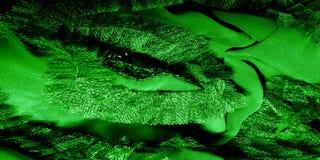 Modèles Vert Dégagez, mais souple, parce qu'il a un Wei plus léger Photographie stock libre de droits