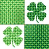 Modèles verts d'oxalide petite oseille illustration libre de droits