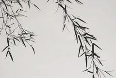 Modéstia das folhas de bambu, um espiritual asiático conduzido imagens de stock