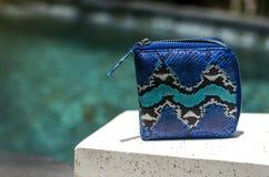 Mod kobiet akcesoria Luksusowy handmade snakeskin pytonu portfel Odgórny widok, błękitny basen, lekkiej wody tło bezpłatny zdjęcie stock