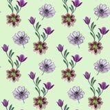 Mod?le de fleurs sans couture d'aquarelle Fleurs peintes ? la main sur un fond blanc Fleurs peintes ? la main de diff?rentes coul illustration libre de droits