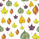 Mod?le sans couture avec des feuilles d'automne sur le fond blanc illustration de vecteur