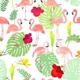 Mod?le sans couture avec les fleurs et l'oiseau de toucan illustration libre de droits