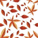 Mod?le sans couture d'automne d'aquarelle illustration stock