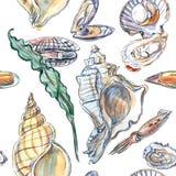 Mod?le sans couture de diff?rents habitants de mer et d'oc?an : coquilles, mollusque et algue photo stock
