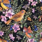 Mod?le sans couture de for?t florale de cru d'?t? d'aquarelle avec des oiseaux, baies, mite, foug?re, fleurs roses illustration libre de droits