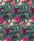 Mod?le sans couture de vecteur avec les palmettes tropicales, usines de jungle, fleurs exotiques illustration de vecteur