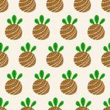Mod?le tir? par la main sans couture de Kokedama Boule de sol couverte de la mousse Usine d?corative japonaise traditionnelle photographie stock libre de droits