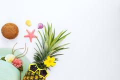 Moda de la piña del inconformista con la fruta tropical, Foto de archivo libre de regalías