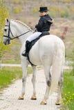 Młoda dziewczyna z białym dressage koniem Fotografia Stock