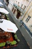 Młoda kobieta target591_1_ blisko ulicznej kawiarni Obraz Royalty Free