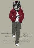 Moda mężczyzna z głową tygrys ilustracji