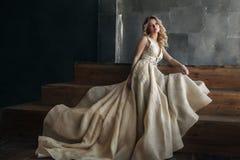 Moda model w długiej sukni na metalu tle fotografia stock