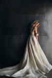 Moda model w długiej sukni na metalu tle Zdjęcie Royalty Free