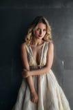 Moda model w długiej sukni na metalu tle Obrazy Royalty Free