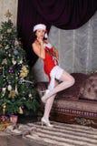 Moda model w pończochach pozuje w studiu Obraz Royalty Free