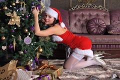 Moda model w pończochach pozuje w studiu Fotografia Royalty Free