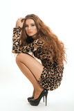 Moda portret młoda brunetki dziewczyna w lampart sukni Zdjęcia Royalty Free