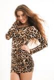 Moda portret młoda brunetki dziewczyna w lampart sukni Obrazy Royalty Free