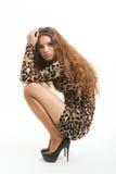 Moda portret młoda brunetki dziewczyna w lampart sukni Zdjęcia Stock
