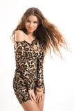 Moda portret młoda brunetki dziewczyna w lampart sukni Obrazy Stock