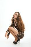 Moda portret młoda brunetki dziewczyna w lampart sukni Zdjęcie Stock
