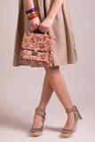 Moda rocznika dziewczyna Obrazy Stock