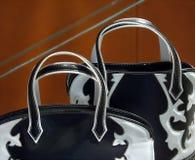 moda torby Fotografia Stock
