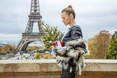 Moda-tratante con el árbol de navidad delante de la torre Eiffel Foto de archivo