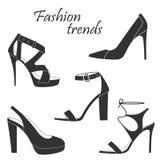 Moda trendy Obraz Royalty Free