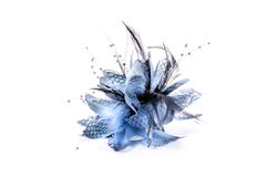 Moda włosy accessorie Obraz Royalty Free