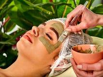 Modder gezichtsmasker van vrouw in kuuroordsalon Gezichtsprocedure royalty-vrije stock afbeelding