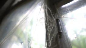 Modderig gebroken venster met strepen die van plastiek zich langzaam in de zomer in slo-mo bewegen stock video