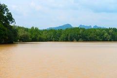 Modderige, Bruine Rivier op een Wildernisgebied van Krabi, Thailand Stock Afbeeldingen
