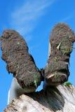 Modderige laarzen Stock Afbeelding
