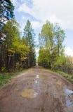 Modderige landelijke weg Stock Afbeeldingen