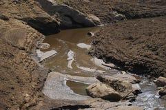 Modderige rivier in platteland Stock Foto