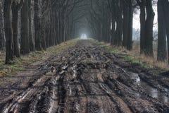 Modderige weg Stock Afbeeldingen