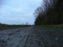 Modderige weg Stock Foto's