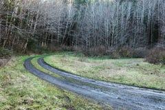 Modderige weg stock fotografie