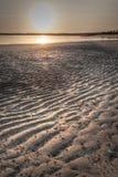 Moddervlakten bij zonsopgang - Kalumburu-Wittebroodswekenbaai royalty-vrije stock foto