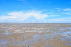 Moddervlakten in de baai Stock Afbeeldingen