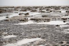 Moddervlakten wanneer het getijde uit is stock fotografie