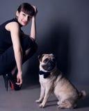 Mode de chien Photographie stock libre de droits
