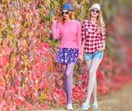Mode de chute Fille Autumn Outfit élégant extérieur Image stock