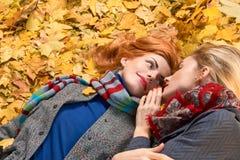 Mode de chute Promenade de femme d'amis en parc d'automne Photographie stock