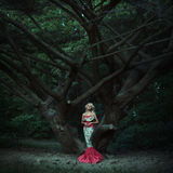 Mode de conte de fées. Sirène photos stock