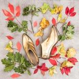 Mode-Ebenen-Lage Herbstlaub und goldene Schuhe Hintergrund Lizenzfreies Stockfoto
