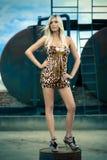 Mode extérieure de fille blonde attirante image stock